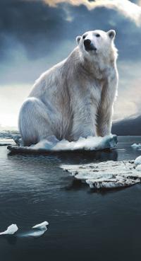 Marjan Minnesma wil de opwarming van de aarde stoppen: gebruik investeringsfonds om de uitstoot van broeikasgas te verlagen