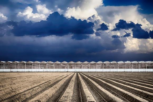 Brexit-bijeenkomst voor de agrosector op 28 juni in Naaldwijk