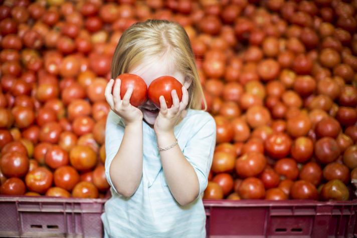 E-nummers gevaarlijk? Dan kan je geen tomaat meer eten